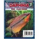 Daphnia 100gr