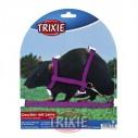 Trixie Set para ratas y hurones, totalmente ajustable